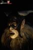 Hexen, Weibsteufel und Hexer